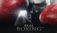 Обзор: Real Boxing