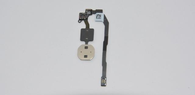 iPhone 7 и 7 Plus будут иметь чувствительную к нажатию кнопку Home