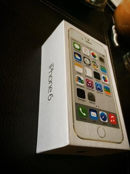 iPhone-6-box-21