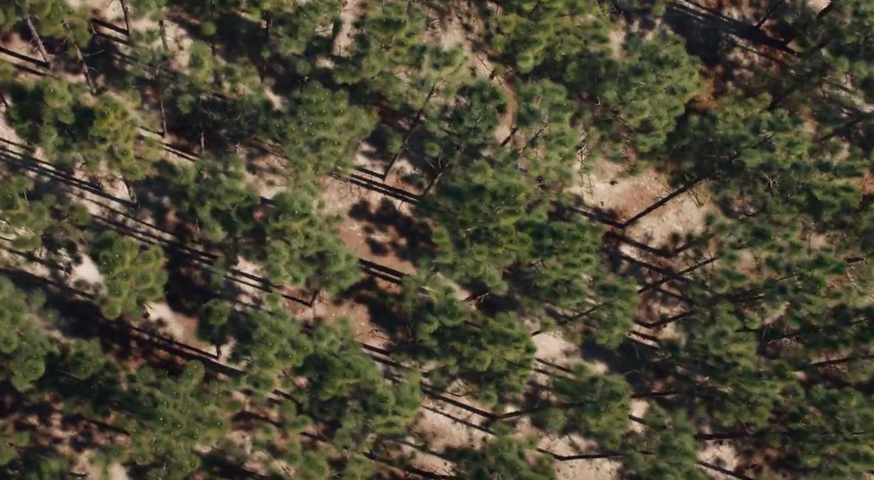 Apple опубликовала новый ролик о защите окружающей среды