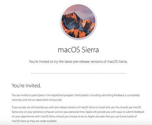 Sierra-seed-program-800x657