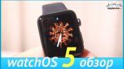 Обзор WatchOS 5 на Apple Watch Series 3 [видео]