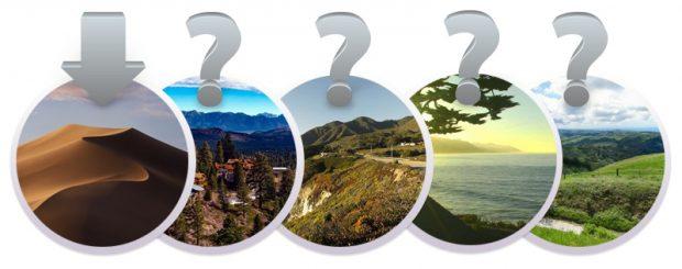 Как будет называться macOS 10.15: Мамонт, Монтерей, Ринкон, Скайлайн или как-то еще?