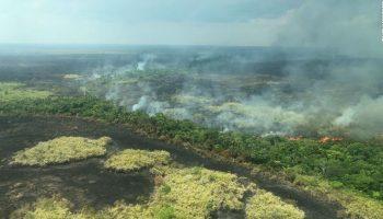 Apple жертвует деньги на сохранение тропических лесов Амазонки после разрушительных пожаров